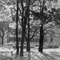 Больница имени С.П. Боткина в Ленинграде. Больничный сад и хирургический павильон