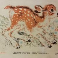 Е.И. Чарушин. Олененок. Цветная литография. 1934 г.