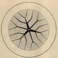 Рис. 9. Идеальная схема грузонапряженности сети (по материалам Ф.С. Материкина)