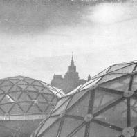 Московский Дворец пионеров. Купола над зимним садом, фрагмент
